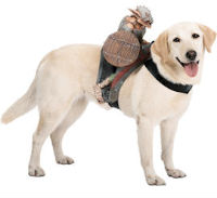 Goblin Dog riding costume