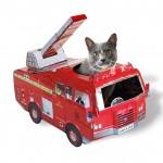 FireTrunkCat-460x460-Small1