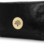 Mulberry Apple Laptop Case