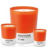 Pantone Candle Orange