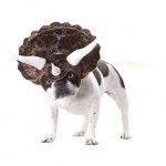 costumes-dog-triceratops