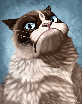 Grumpy Cat Tard Fan Art