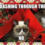 Grumpy Cat - dashing through the no.