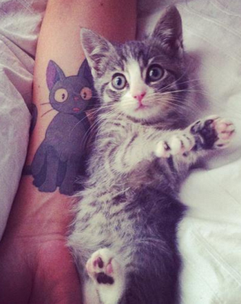 Kitten Imitates Owner's Tattoo