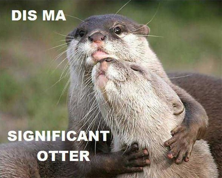 Panning for Internet Gold: The significant otter edition