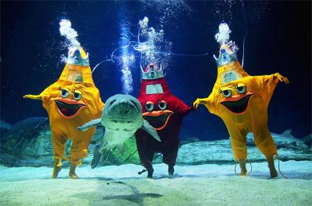 Underwater shenanigans