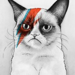 Grumpy Cat as David Bowie print on Etsy